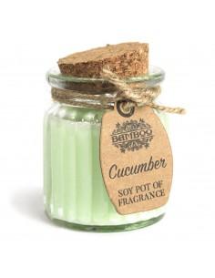 Soja Geurkaars - Komkommer
