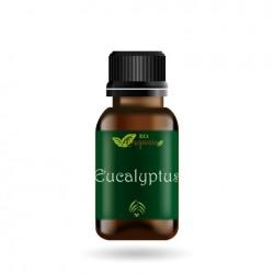 Geurolie - Eucalyptus