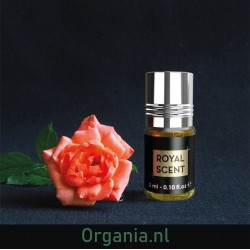 Parfum - Royal Scent