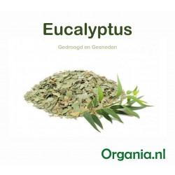 Gedroogde Eucalyptusblad