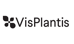 Visplantis